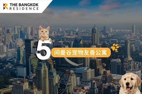 5间曼谷宠物友善公寓